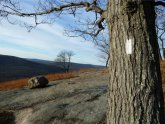 Harriman Bear Mountain Trail Map