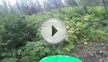 Mountain Biker Almost Hits Bear - CRAZY GOPRO FOOTAGE